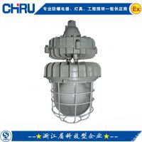 【创瑞】增安型不锈钢防爆灯丨led防爆灯具厂丨移动式防爆灯