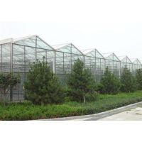 天津盛达通源(在线咨询)_蔬菜大棚钢管_蔬菜大棚钢管接头