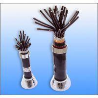ia-DJYP2V22厂家特级产品本安电缆