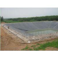 供应河南湖北山西养殖场厌氧池,好氧池,调节池防渗密封黑膜
