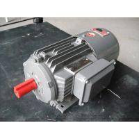 上海德东电机 厂家直销 YEJ2-180L-4 22KW B5 电磁制动电动机