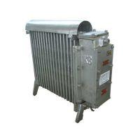 RB2000/127(A)煤矿用隔爆型电热取暖器,矿用取暖器
