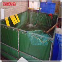 优质百分之百防渗漏防水帆布定做帆布储水池 养鱼帆布池定做