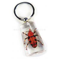 厂家供应 手饰批发 水桶型水晶透明昆虫标本琥珀钥匙扣旅游纪念品