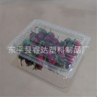 一次性塑料包装盒PVC透明水果盒子新款蛋糕盒750g装樱桃盒