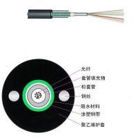直供耐斯龙4芯单模室外架空/管道光缆GYXTW-4B1 铠装阻燃光缆 可定制