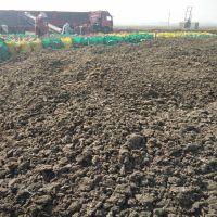 河北绿沃肥业有限公司 河北 正定县 干鸡粪有机肥多少钱一吨,干鸡粪价格