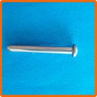 顺德不锈钢销钉厂 温控器销轴铆钉-圆柱头实心铆钉-定做特殊不锈钢销铆钉