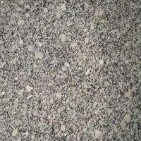 白色花岗岩 梨花白板材 天然花岗岩 华鸿石业供应 600*600*15mm磨光面 厨房台面