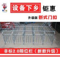 山东猪八戒设备非标2.0限位栏 母猪定位栏 母猪围栏(10猪位)