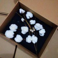 批发艺感天然植物棉花干花 手工花束 装饰花材