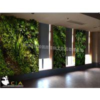 众诚CIA仿真植物墙 室内精品仿真绿墙 垂直绿化植物墙 绿植墙厂家