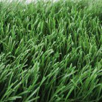 抗老化、防晒、防水、防滑、耐磨人造草坪