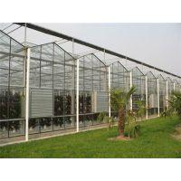 广州玻璃温室价格|广州玻璃温室|芳诚园艺