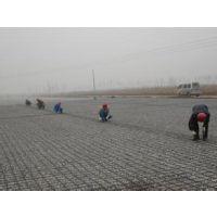 钢塑土工格栅厂家甘肃省定西市钢塑土工格栅价格低