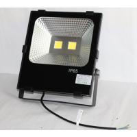厂家供应新款 推荐户外照明灯具 SK-TG2-03晶元芯片 100W卡扣投光灯