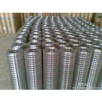 耀进丝网制造供应各种规格电焊网