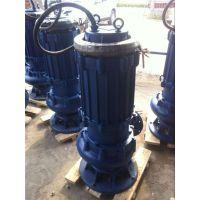300QW950-24-110污泥泵