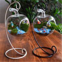 新款 苔藓微景观生态瓶 DIY创意小苹果玻璃礼品 迷你植物盆栽