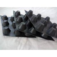 济南塑料排水板施工单位 HDPE卷材排水板润泽厂家