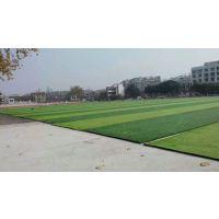 重庆足球场人造草坪项目单丝草50mm型,项目合作材料供应铺设使用寿命长无需维护造价低