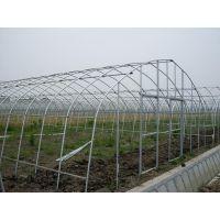 定做各种规格优质蔬菜大棚管骨架管 广东泰州大棚钢管厂家