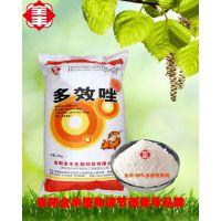 多效唑15%可湿性粉剂 控旺增产作用 植物生长调节剂 安阳全丰厂家直销