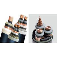 阳谷特种电缆(在线咨询)|电力电缆|yjv电力电缆