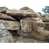 供应龟纹石价格 优质龟纹石产地100%龟纹石源产地批发