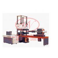 微机控制电液伺服减震器成品压剪试验机