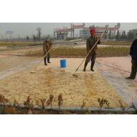 太湖施工园林艺术混凝土仿石地坪,人行道压花地坪压花地面