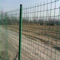 养鸡铁丝网/镀锌铁丝网/浸塑铁丝网