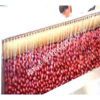 供应洗枣机豪联牌HLXM-1000型骏枣红枣大枣全自动清洗机