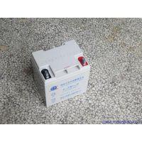 丰日蓄电池6-FM-38 12V38Ah阀控密封铅酸蓄电池 丰日蓄电池报价