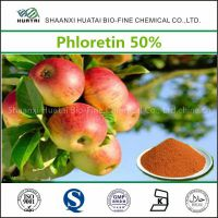 Apple Extract Phloretin 50% Powder for Skin Whitening