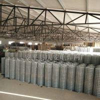 价格便宜的圈玉米网厂家@结实不开焊不断丝圈玉米电焊网现货供应