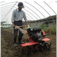 小型田园松土机 鼎信特价批发多功能小型旋耕机