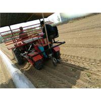 移栽机|西瓜移栽机|适应性广效率高|田耐尔