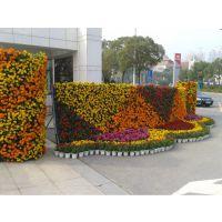 生态景观墙、景观植物墙、绿化墙、屋顶绿化、垂直绿化、室内绿化
