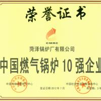 安徽燃气锅炉 菏泽锅炉厂
