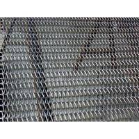 铜陵市网带_盛宏机械(图)_不锈钢网带