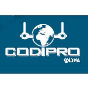 CODIPRO(卢森堡)SS.DSR不锈钢旋转吊环/青岛鑫源诚/中国代理商