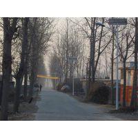 磊鑫照明供应6米现货路灯 批发定制各式道路照明路灯 毛坯杆批发