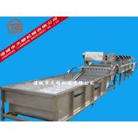 厂家热销TS-15000型全自动大姜清洗去皮加工流水线机械设备(推荐)