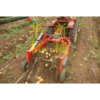 小型土豆收获机 厂家直销不破皮土豆收获机