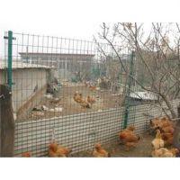 东西湖养殖护栏网厂家,龙泰百川栅栏,养殖护栏网厂家电话
