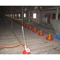 养殖自动水线厂家/养殖自动水线直销/养殖自动水线订购/辉腾供