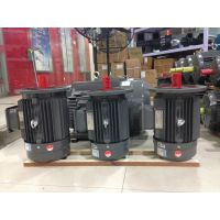 厂家现货 (YE2-200L1-6 B5 18.5KW) 德东三相异步电动机