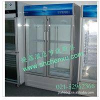 星星冰柜 双门冷藏柜 商用冰箱 立式展示柜 啤酒柜 保鲜柜 冷柜