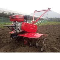 鼎信专业出售优质微耕机 果园除草机 农业专用微耕机